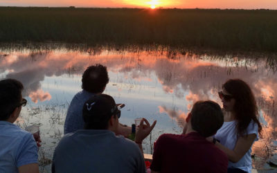 Why Book a Tour with Miami Everglades Connection?