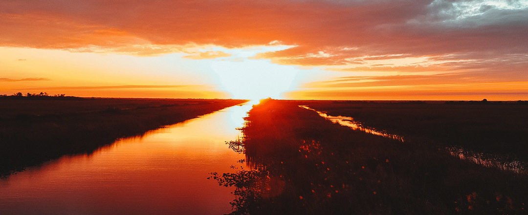 Everything You Need to Know About Taking a Sunset Everglades Tour